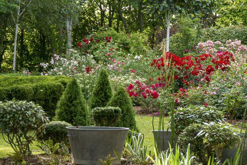 printemps duo pour un jardin