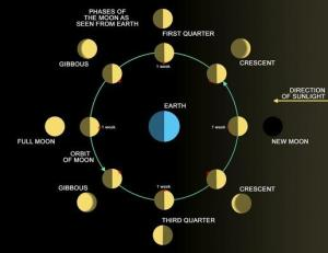 Diagram of Phases of the Earth's Moon | Earth and Space