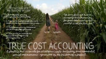 True Cost Accounting: The Real Cost of Cheap Food image