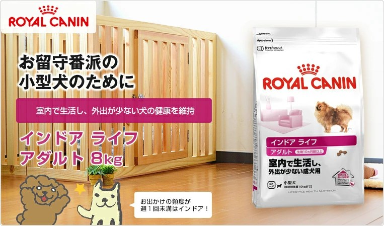 【ロイヤルカナン 成犬用】インドア ライフ アダルト 8kg / 正規品【あす楽】