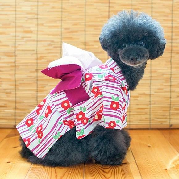 【ドッグウェア】夏祭り仕様の可愛いドッグウェア☆iDog 京紫 山吹 の2カラー 価格1,000円 (税込 1,080 円)