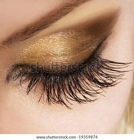 stock photo : Woman eye with extremely long eyelashes