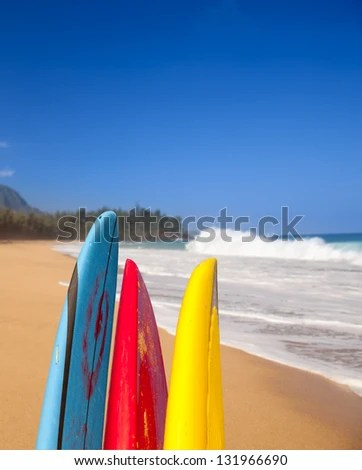 Vertical format of surf boards by stormy ocean