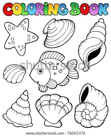 seashells pictures book with seashells