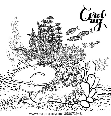 coral reef in line art style ocean plants and rocks isolated on