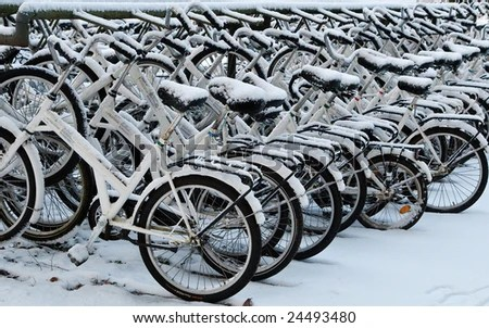 stock photo : white snow covered bicycles