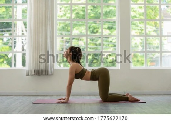 Athletic Asian woman in sportwear practice yoga Cat Cow pose to meditation at home in living room in the morning Feeling so comfortable and relax,Healthcare Concept