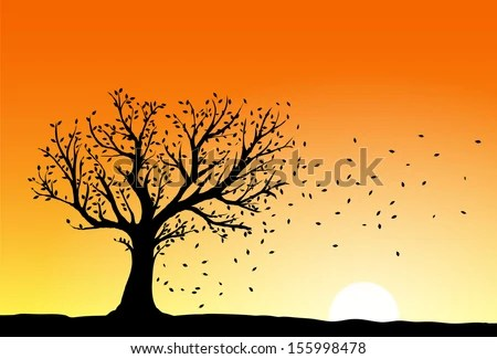 Autumn tree silhouette in sunset, wind blowing away the falling leaves - stock vector