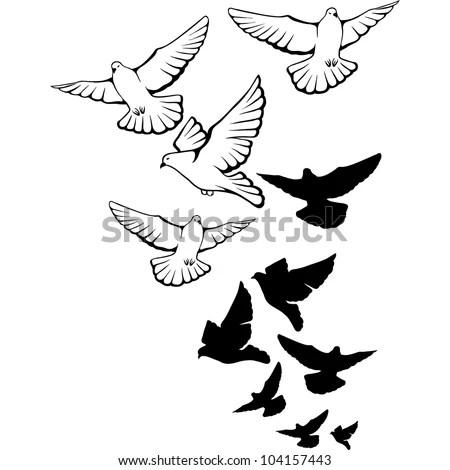 Flying Pigeons Background Hand Drawn Vector Illustration