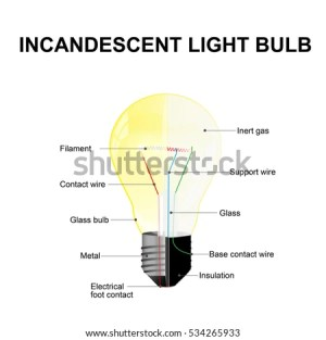 Diagram Showing Parts Modern Incandescent Light Stock