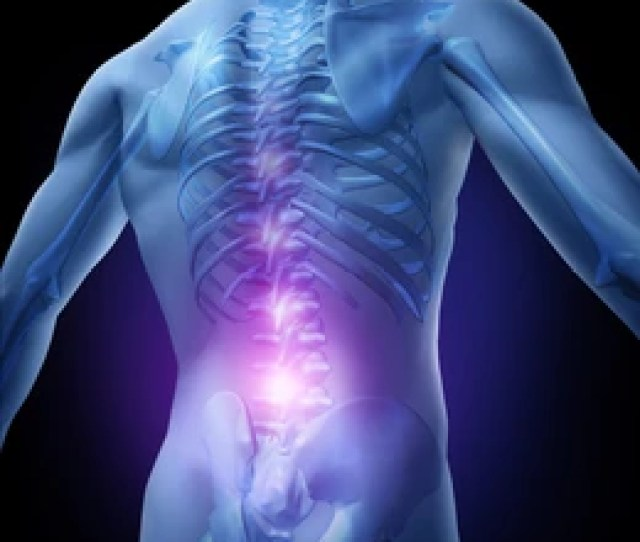 Lower Back Pain And Human Backache With An Upper Torso Body Skeleton Showing The Spine And