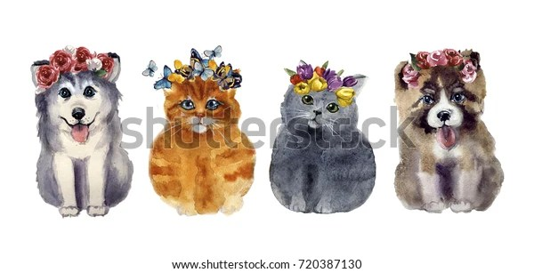 Watercolor Cute Cats Dogs Flowers On Stock Illustration 720387130