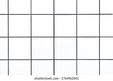 https www shutterstock com image photo closeup shot small white square tiles 1764963341