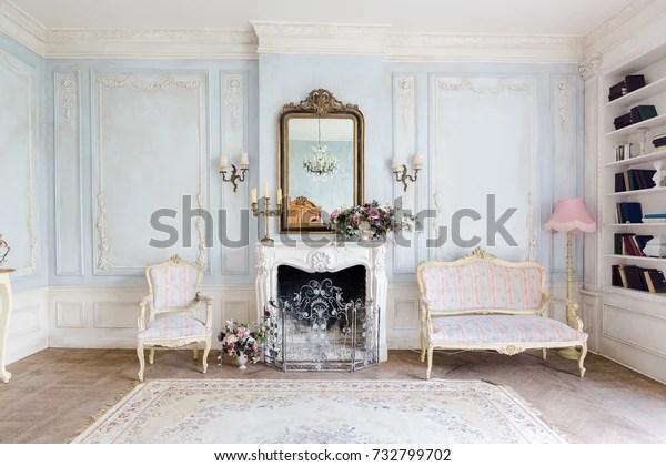 https www shutterstock com fr image photo cozy interior living room chic beautiful 732799702