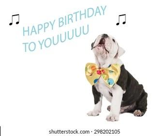 Singing Happy Birthday Images Stock Photos Vectors Shutterstock