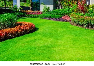 Relaxing Lawn Images Stock Photos Vectors Shutterstock