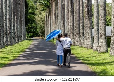 "Image result for couple in peradeniya campus"""