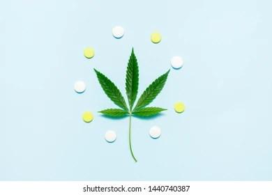Blue Pot Leaf Pill   Jidileaf co