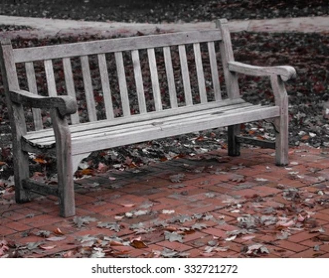 Park Bench Surrounded By Fall
