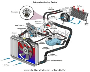 Automotive Cooling System Infographic Diagram Showing