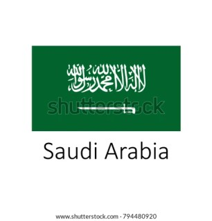 SKYPE Interview for Multiple Vacancies in Saudi Arabia