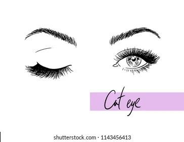 https www shutterstock com image vector illustration female eyes style cat 1143456413