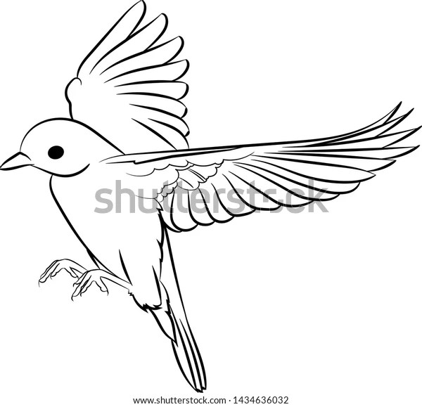 Line Drawing Flying Little Bird Vector Stock Vector Royalty Free 1434636032