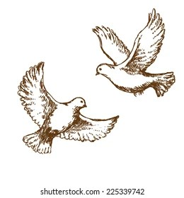 Birds Flying Sketch Images Stock Photos Vectors Shutterstock