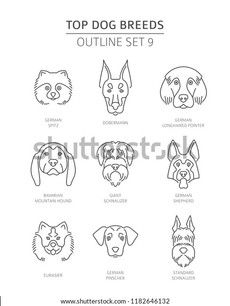 Top Dog Breeds Pet Outline Collection Stock Vector Royalty Free 1182646132