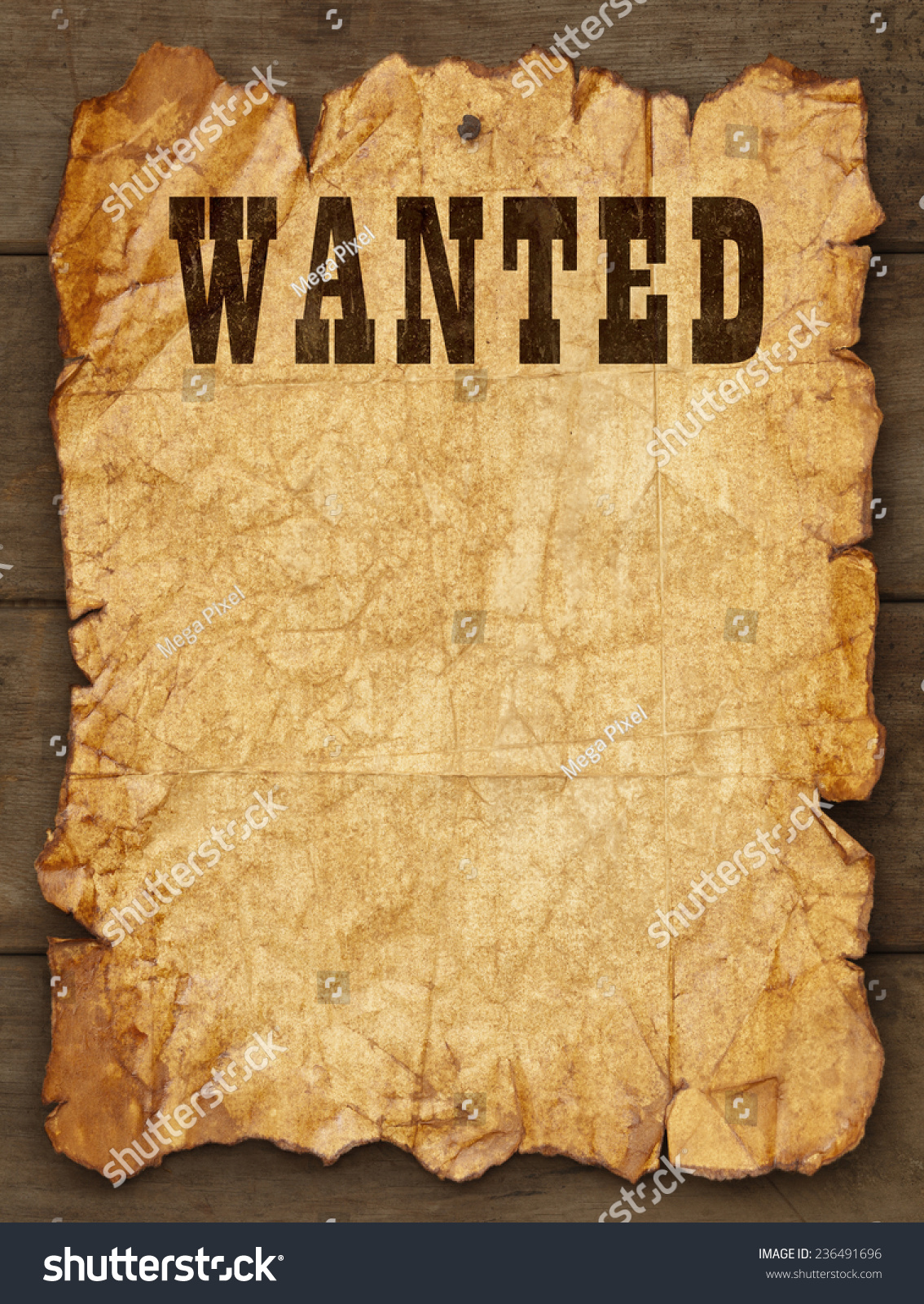 Blank Wanted Poster Template wanted poster template buy woman – Wanted Template Poster
