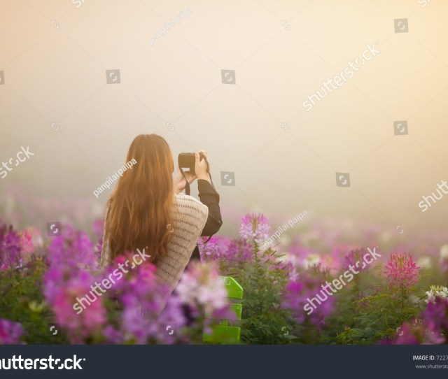 A Young Woman In A Field Of Flowers Mountains And Fog Love In Nature