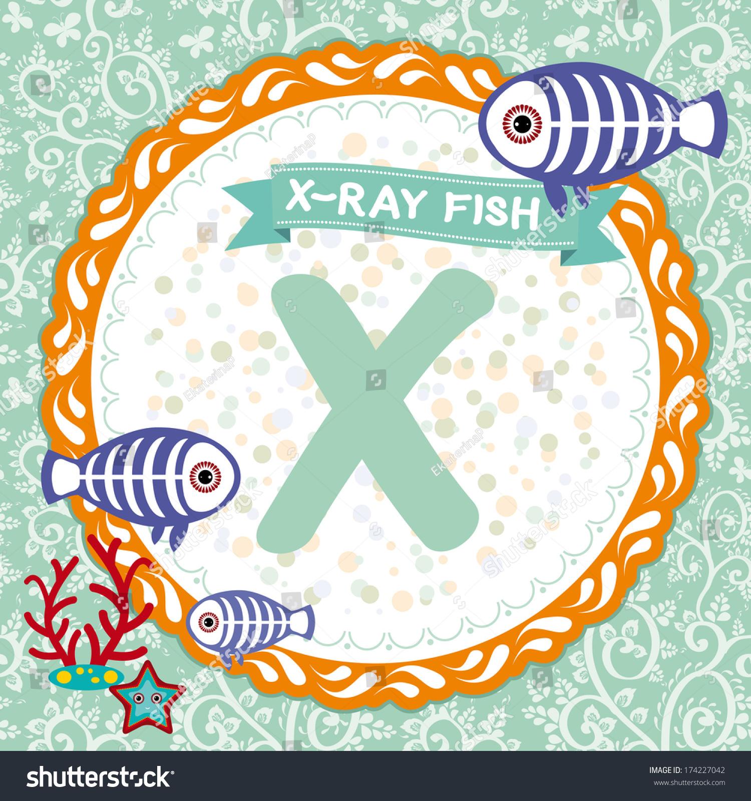 Abc Animals X Is X Ray Fish Children S English Alphabet
