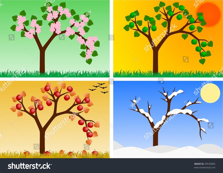 Apple Tree In Four Seasons Stock Photo Shutterstock