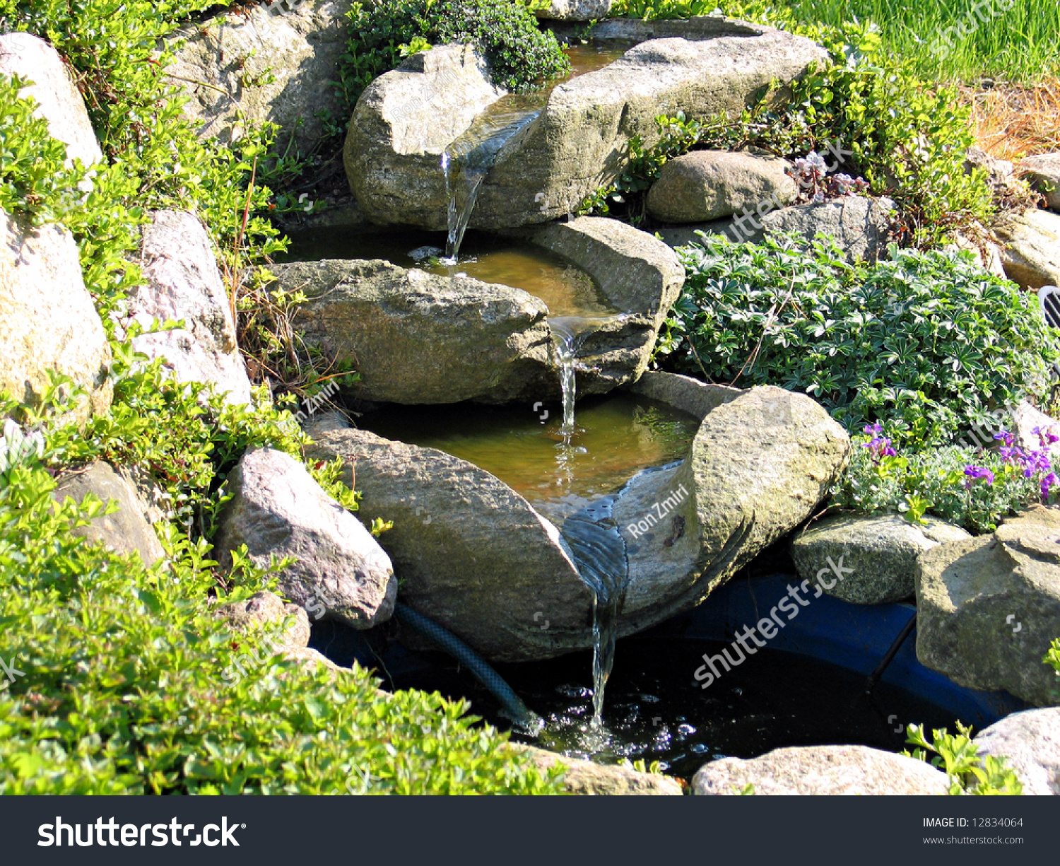 Pond Decorative Rocks