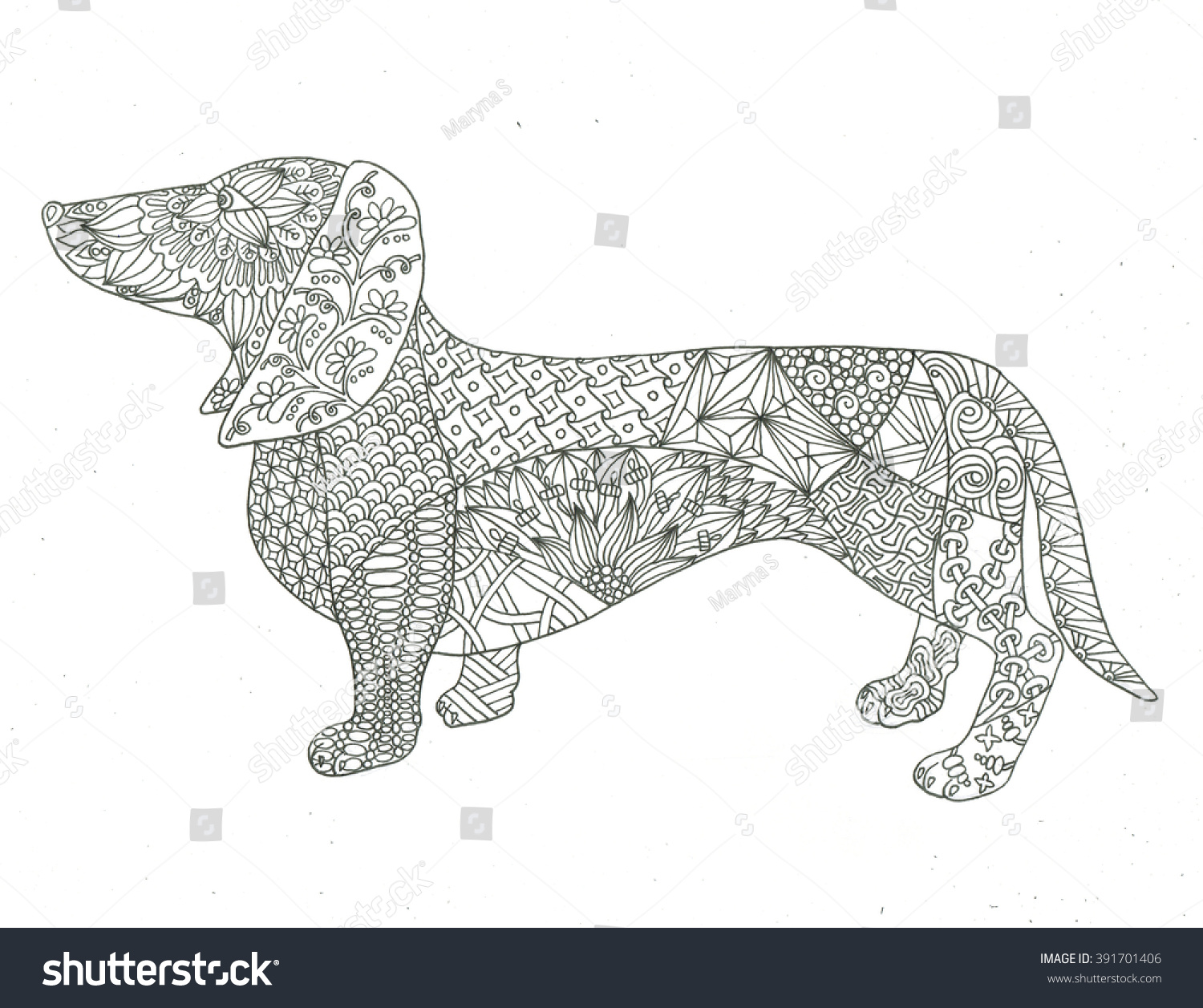 dachshund dog coloring page stock photo 391701406 shutterstock