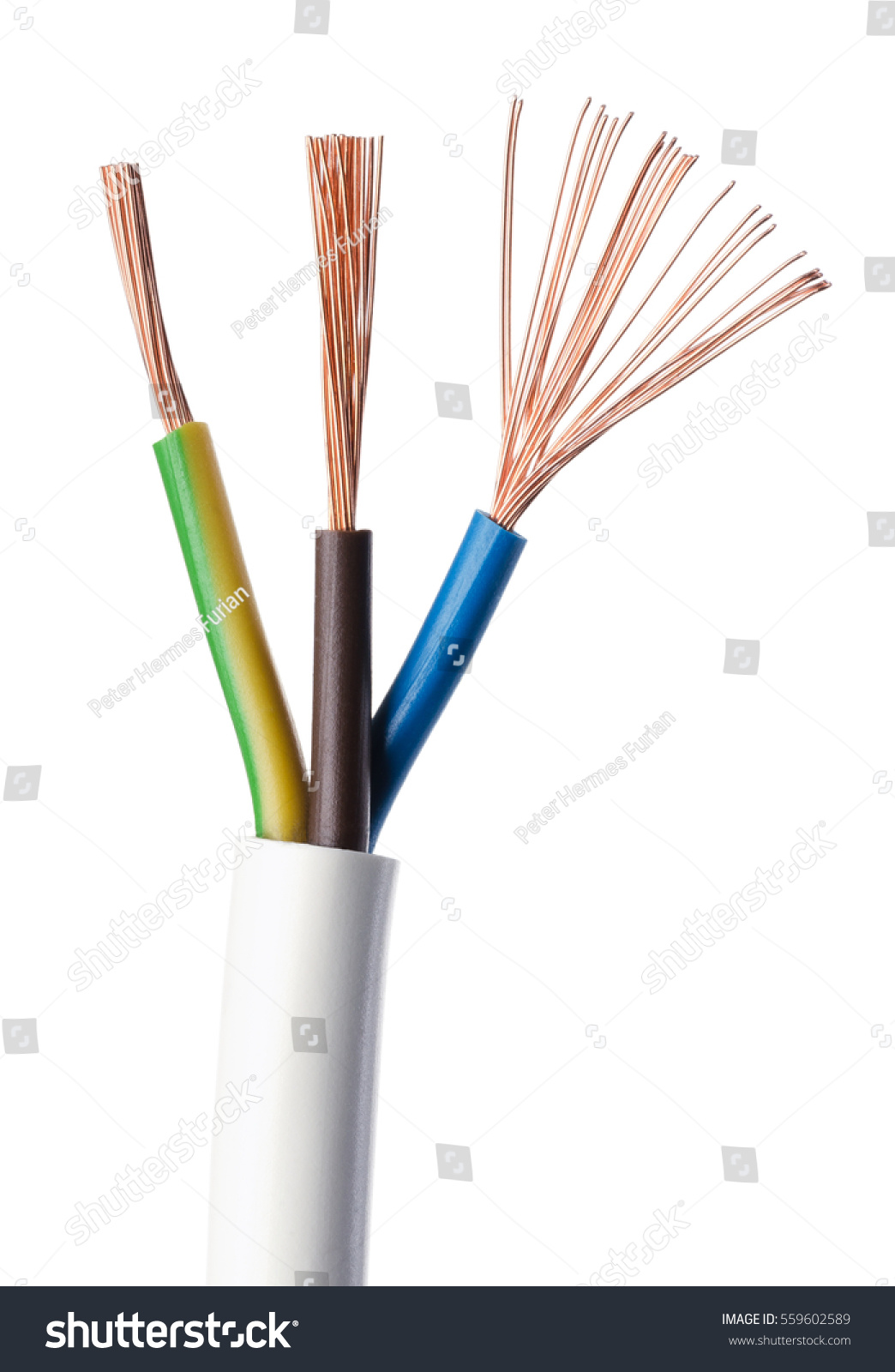 Image Result For Electrical Wires Brown And Blue