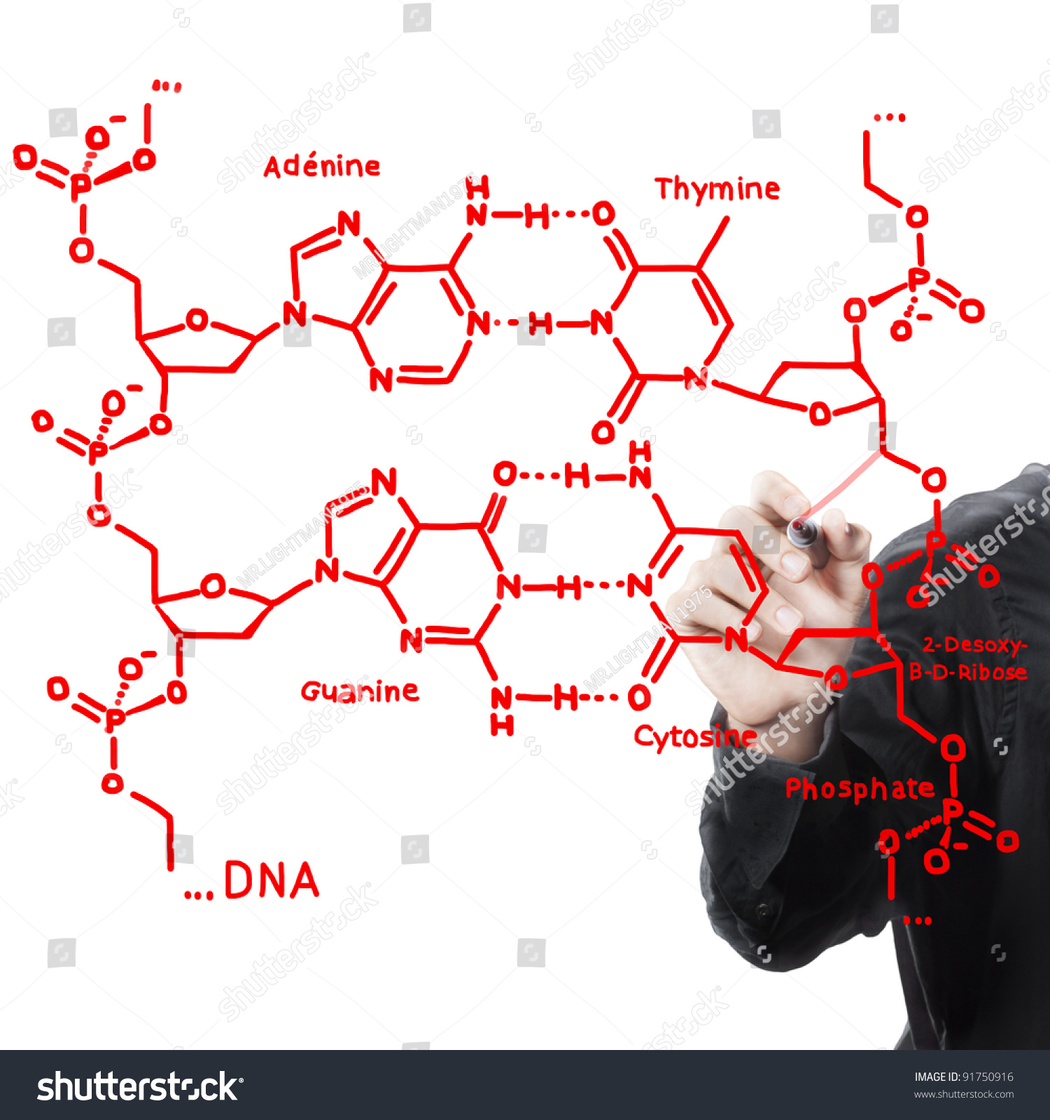 Hand Writing Maths Formula Dna Structure Stock Illustration