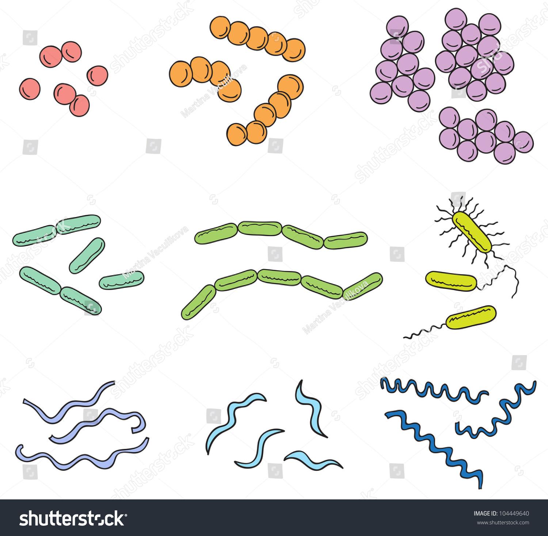 Illustration Many Types Bacteria Cartoon Style Stock