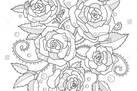 Raster Illustration Anti Stress Coloring For Adult Book Picture Of A Rose Imageweb Info Roses Flowers