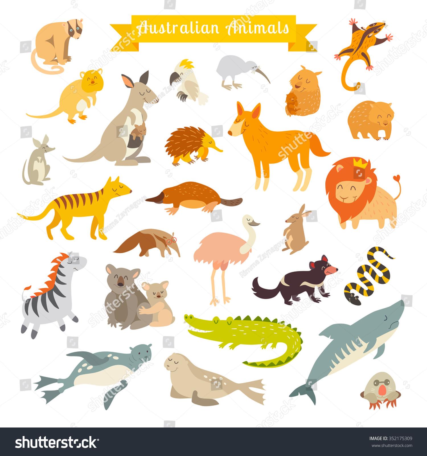 Animals Of The World Australia Australian Animals For