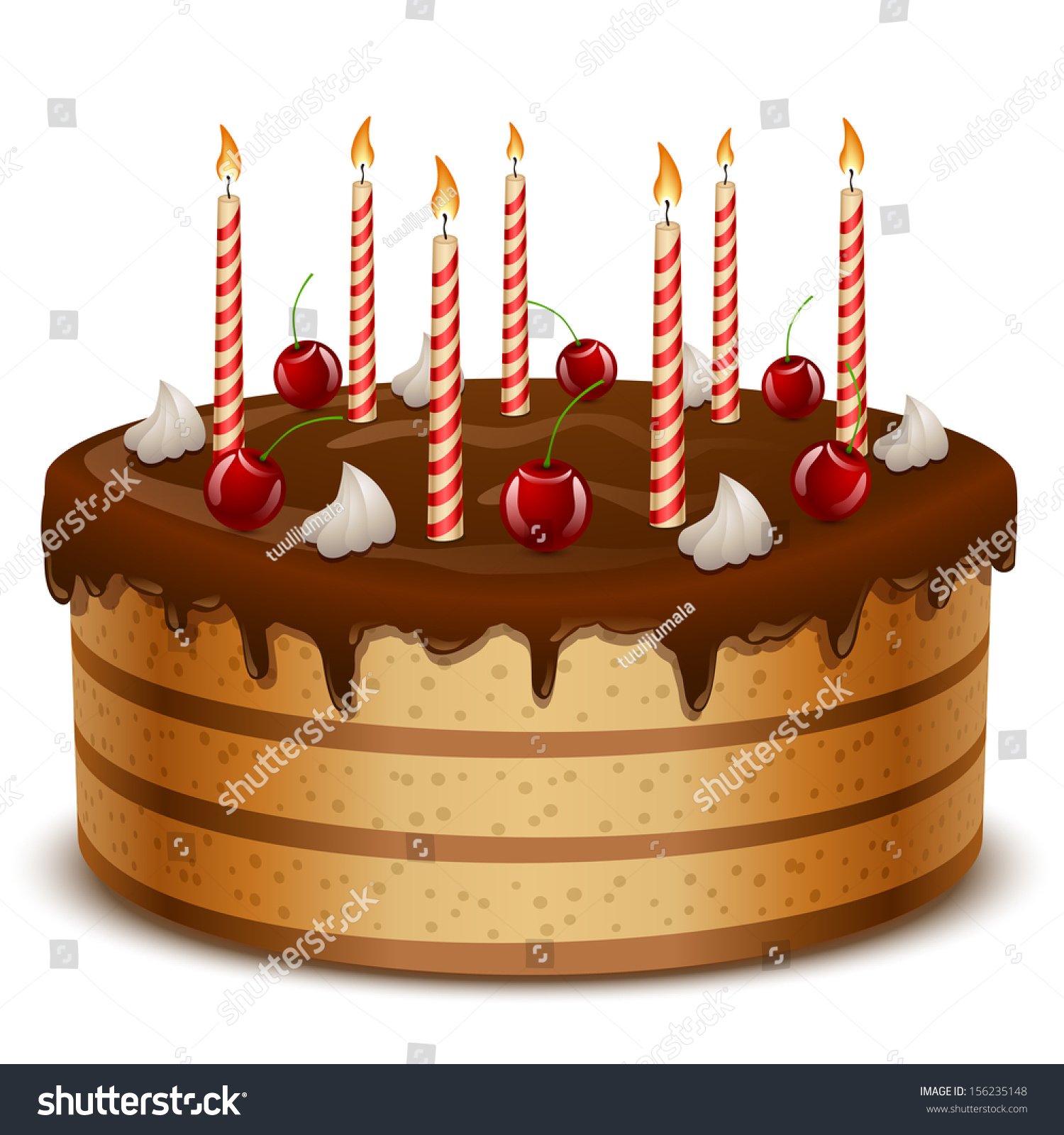 Birthday Cake Candles Isolated On White Stock Vector