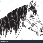 Black White Sketch Horses Face Vector Stock Vector Royalty Free 181768922