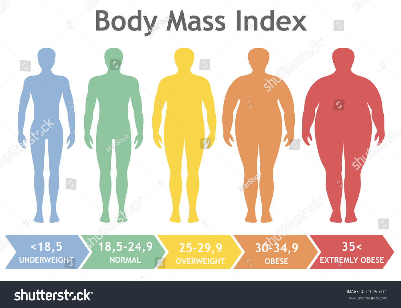 Body Mass Index Vector Illustration Underweight Stock
