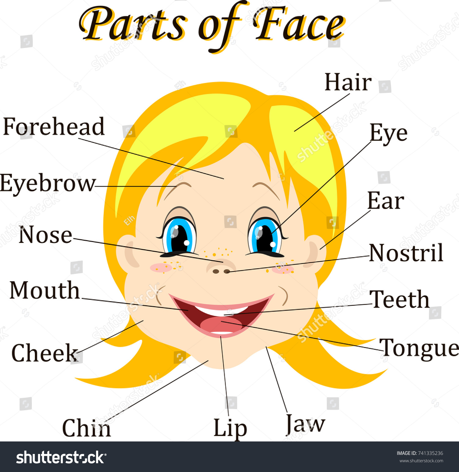Cartoon Child Girl Vocabulary Face Parts