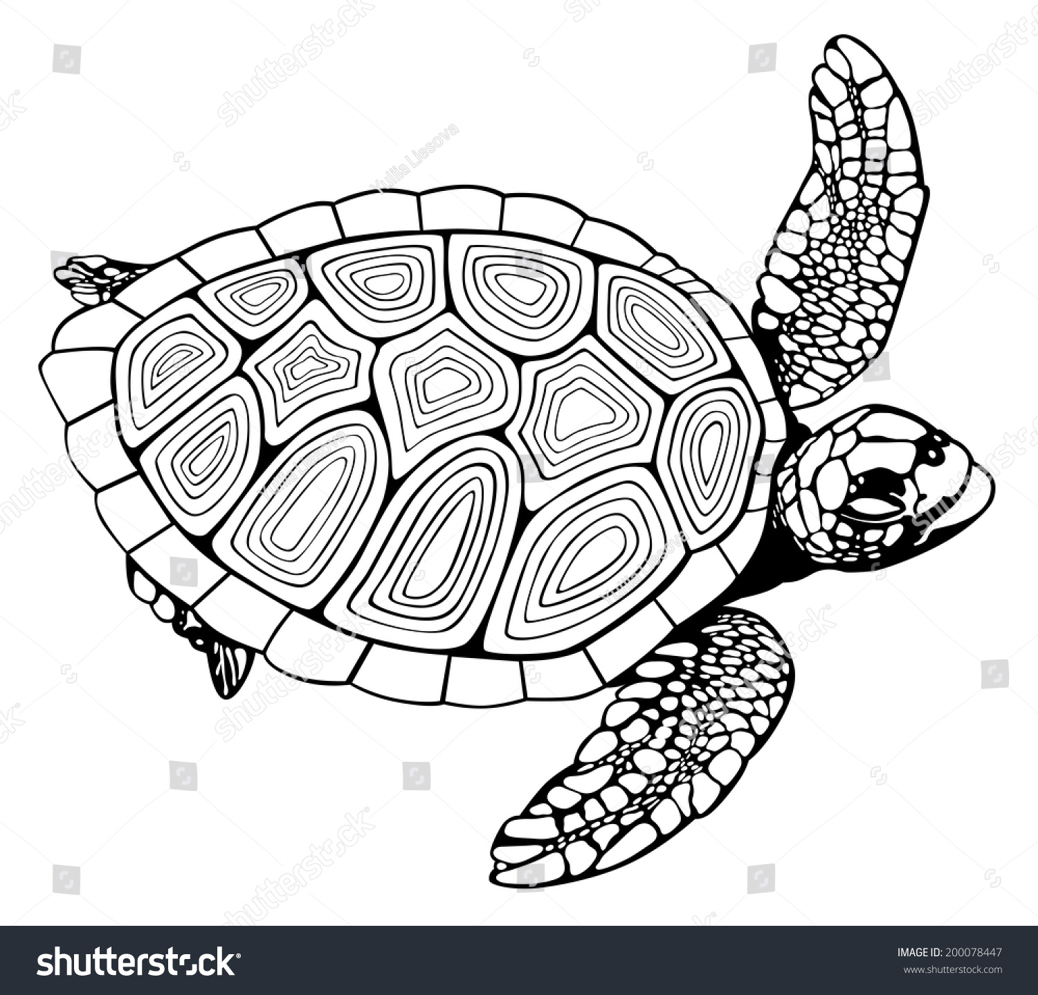 Coloring Book Turtle Stock Vector