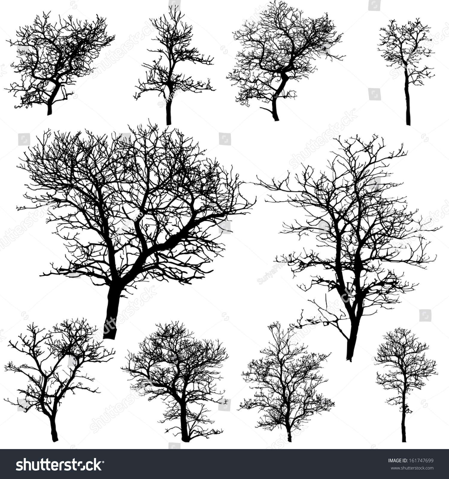 Dead Tree Without Leaves Vector Illustration Stock Vector