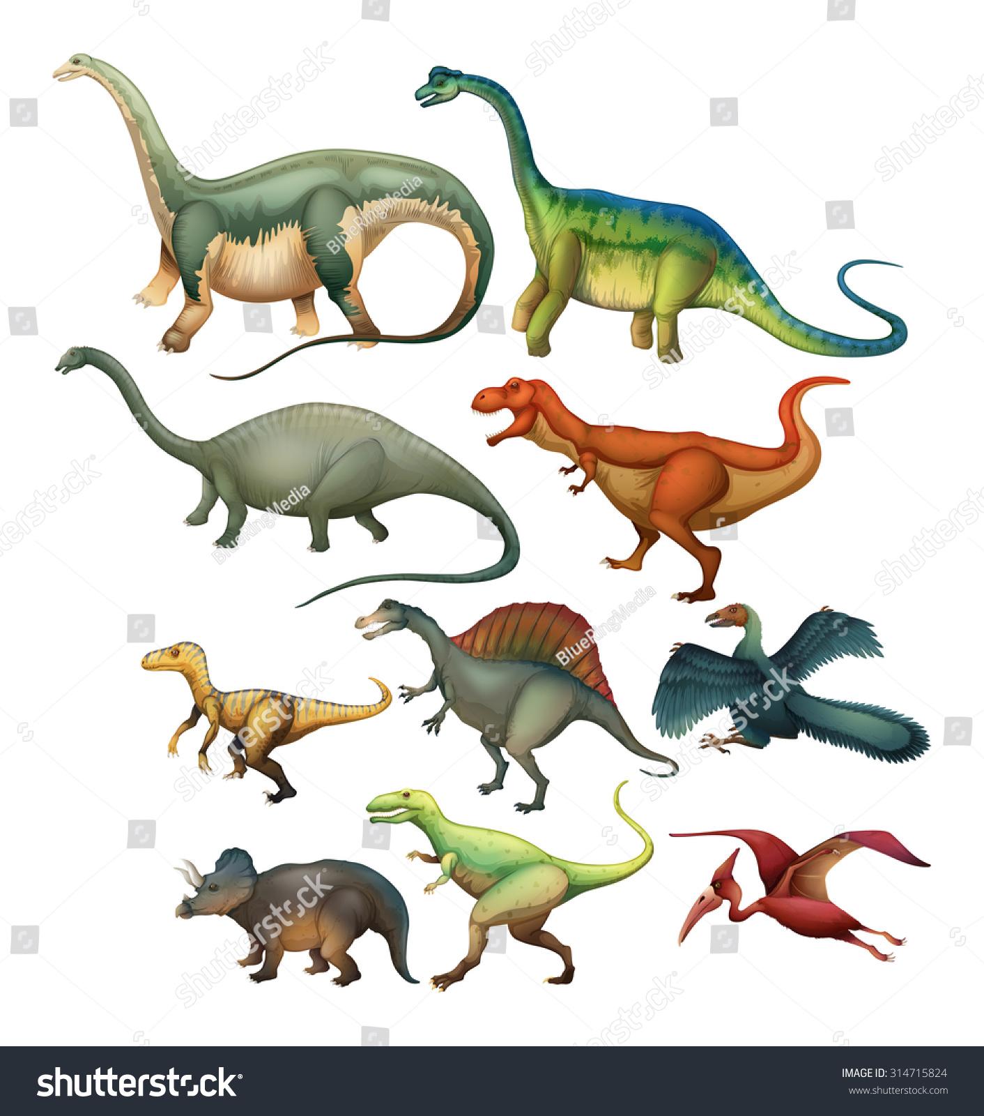 Different Type Dinosaurs Illustration Stock Vector