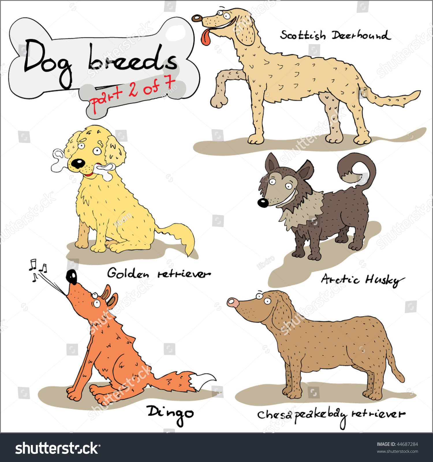 Dog Breeds 2 Stock Vector