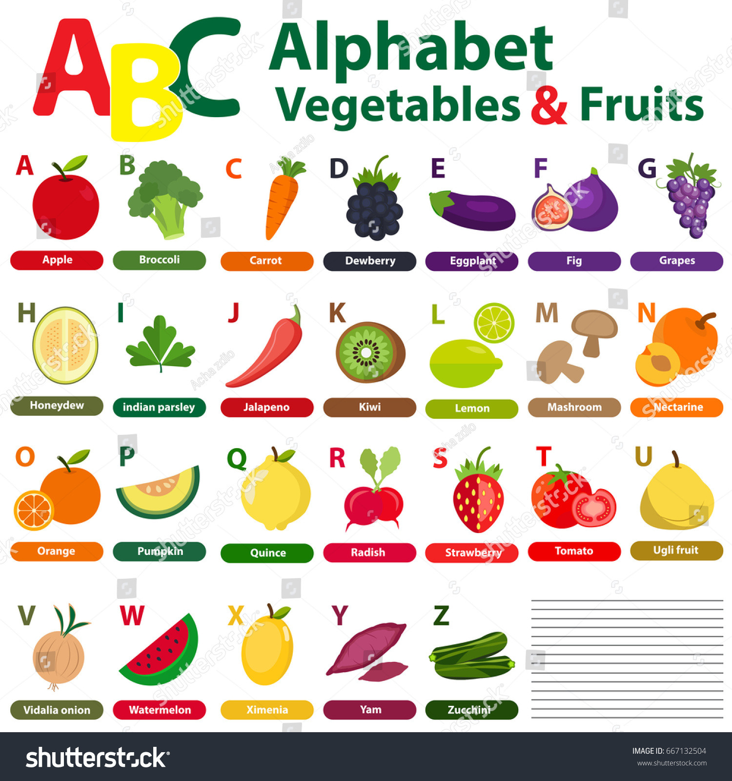 English Alphabet Kids Fruits Vegetables Back Stock Vector