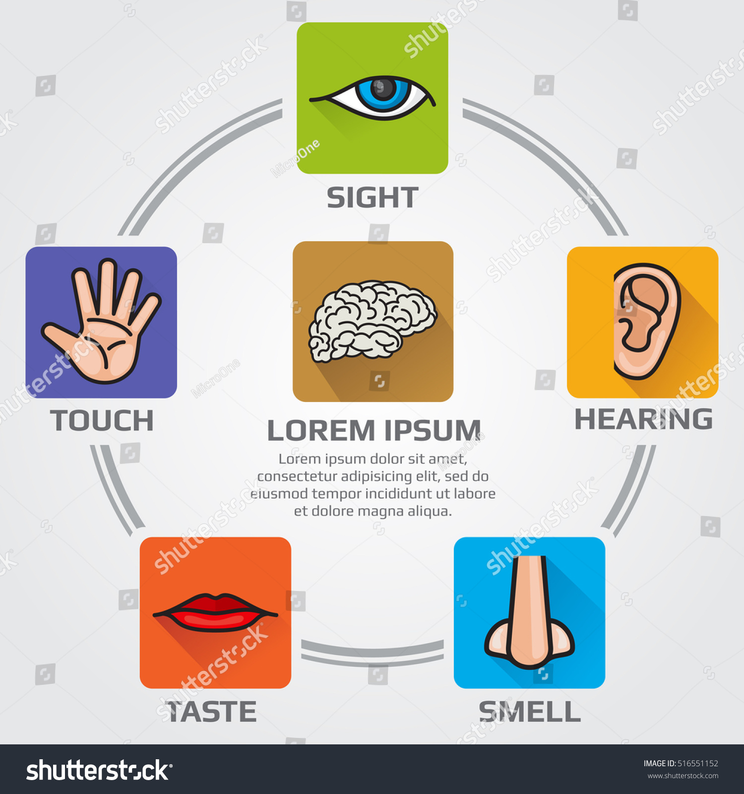 Five Human Senses Smell Sight Hearing Stock Vector